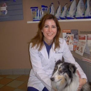 Zelig - This was taken in May 2009. You can tell how much our suspicious little dog really likes Dr. Sugar