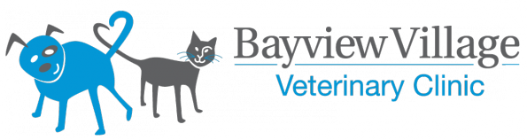 Bayview Village Veterinary Clinic